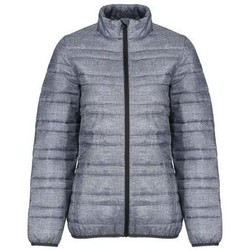Clothing Women Coats Professional FIREDOWN Insulated Jacket Grey