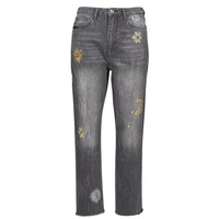 Clothing Women Straight jeans Desigual LAGUN Grey