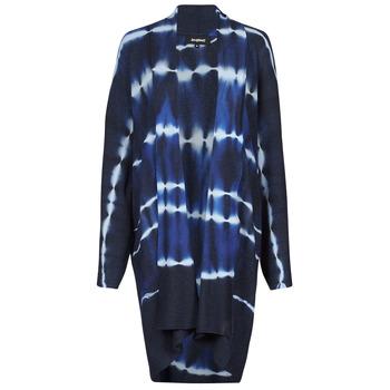 Clothing Women Jackets / Cardigans Desigual BRUMA Blue