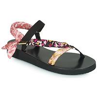 Shoes Women Sandals Ted Baker  Multicolour