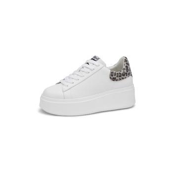 Shoes Women Low top trainers Ash  White / Leopard
