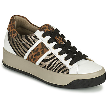 Shoes Women Low top trainers IgI&CO DONNA AVA White / Brown