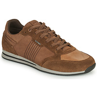 Shoes Men Low top trainers Geox EDIZIONE Brown