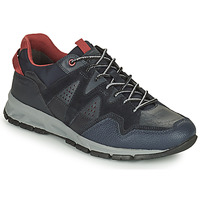 Shoes Men Low top trainers Geox DELRAY Marine