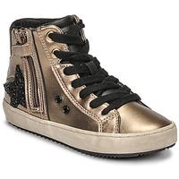Shoes Girl Hi top trainers Geox KALISPERA Gold / Black