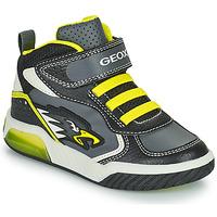 Shoes Boy Hi top trainers Geox INEK Grey / Green
