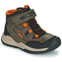 Shoes Boy Mid boots Geox TERAM ABX Brown
