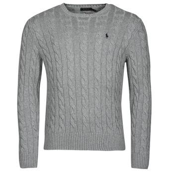 Clothing Men Jumpers Polo Ralph Lauren SERINA Grey