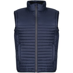 Clothing Men Duffel coats Professional Men's Honestly Made 100% Recycled Insulated Bodywarmer Blue