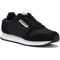 Shoes Women Low top trainers Calvin Klein Jeans Runner Lace Up Suede Womens Black Trainers Black