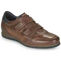 Shoes Men Low top trainers Fluchos DANIEL Brown