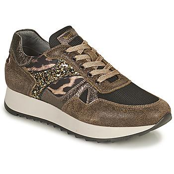 Shoes Women Low top trainers NeroGiardini  Kaki / Leopard