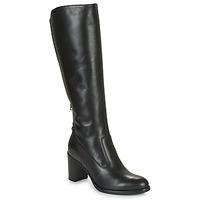Shoes Women High boots NeroGiardini HARICOTO Black