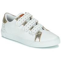 Shoes Women Low top trainers Les Tropéziennes par M Belarbi SUZETTE White / Gold