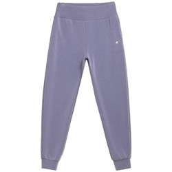Clothing Women Tracksuit bottoms 4F SPDD011 Grey