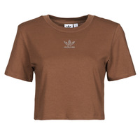 Clothing Women Short-sleeved t-shirts adidas Originals CROPPED  TEE Brown