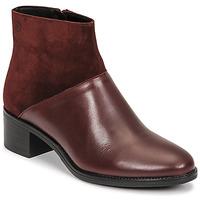 Shoes Women Ankle boots Betty London PANDINA Bordeaux