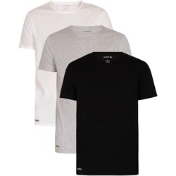 Clothing Men Short-sleeved t-shirts Lacoste 3 Pack Essentials Lounge T-Shirt multicoloured