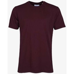 Clothing Short-sleeved t-shirts Colorful Standard T-shirt  Oxblood Red rouge bordeaux