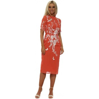 Clothing Women Short Dresses Hope & Ivy Coral Fitted Pencil Dress with Oriental Embroidery Orange