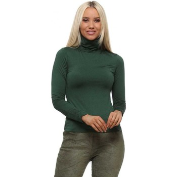 Clothing Women Tops / Blouses Qed London Green Turtle Neck Soft Touch Long Sleeve Top Green