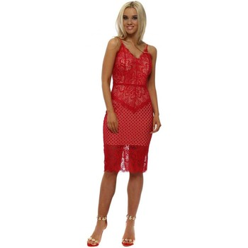 Clothing Women Long Dresses Lucy Wang Red Lace Cami Pencil Dress Red