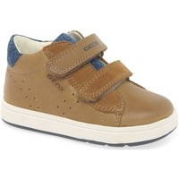 Shoes Boy Low top trainers Geox B Biglia Boys Infant Shoes brown