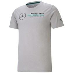 Clothing Men Short-sleeved t-shirts Puma Mercedes F1 Logo Grey