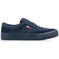 Shoes Men Low top trainers Tommy Hilfiger EM0EM00800C87 Navy blue