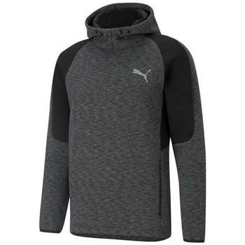 Clothing Men Sweaters Puma Evostripe Hoodie Graphite