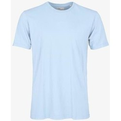 Clothing Short-sleeved t-shirts Colorful Standard T-shirt  Polar Blue bleu pâle