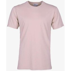 Clothing Short-sleeved t-shirts Colorful Standard T-shirt  Faded Pink rose pale