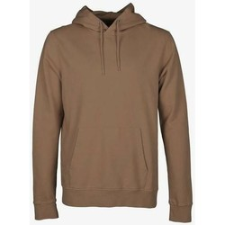 Clothing Sweaters Colorful Standard Sweatshirt à capuche  Sahara Camel marron clair
