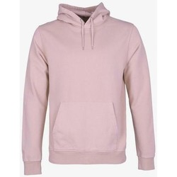 Clothing Sweaters Colorful Standard Sweatshirt  Faded Pink rose pale