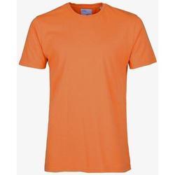 Clothing Short-sleeved t-shirts Colorful Standard T-shirt  Burned Orange orange