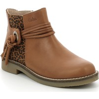Shoes Girl Ankle boots Aster Chaussures fille  Wizia marron