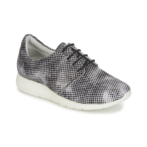 Shoes Women Low top trainers Maruti WING Brown