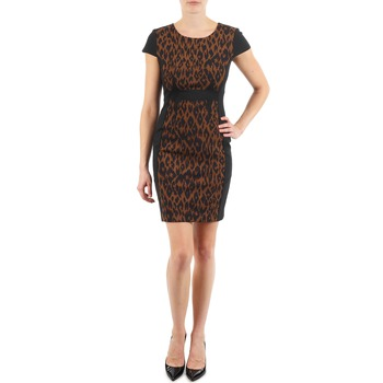 Clothing Women Short Dresses Manoukian EMMA Black / Leopard