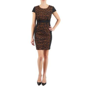 Clothing Women Short Dresses Manoukian EMMA Black / Leopard