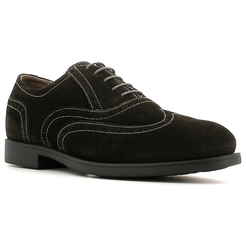 Shoes Men Derby Shoes Nero Giardini A503591U Lace-up heels Man Anthracite Anthracite