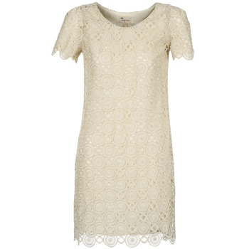 Clothing Women Short Dresses Stella Forest ARO051 Ecru / Gold
