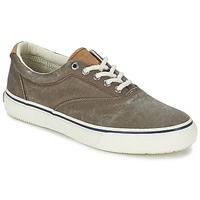 Shoes Men Low top trainers Sperry Top-Sider STRIPER CVO CHOCOLATE