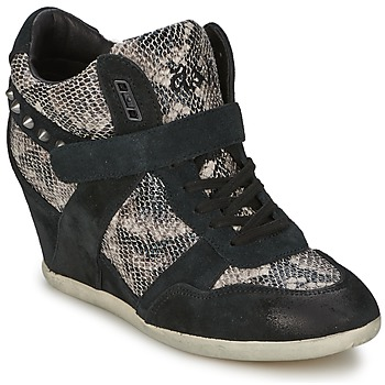 Shoes Women Hi top trainers Ash BISOU Black / Python