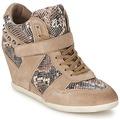 Shoes Women Hi top trainers Ash