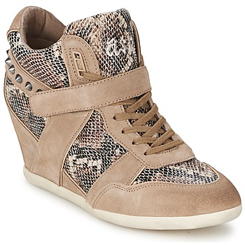 Shoes Women Hi top trainers Ash BISOU Taupe / Python
