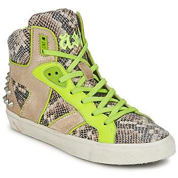 Shoes Women Hi top trainers Ash SONIC Python / Yellow