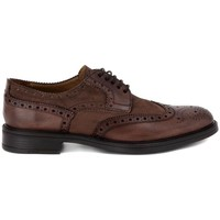 Shoes Men Derby Shoes Kammi BRECOS SCOZIA DELAVE' TAUPE    100,6