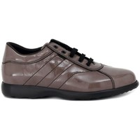 Shoes Women Low top trainers Frau SHINE TAUPE  91,9