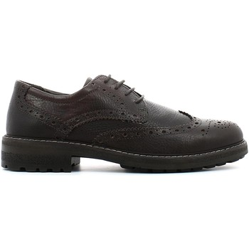 Shoes Men Derby Shoes Igi&co 4704 Lace-up heels Man T.moro T.moro