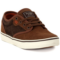 Low top trainers Globe MOTLEY  BROWN CHOCO
